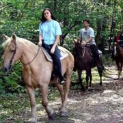 0070 LEARN HORSEBACK RIDING CLASS, BEGINNERS