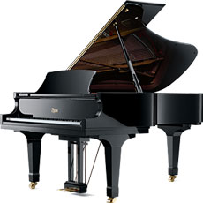 1601 PIANO CLASSES FOR ENJOYMENT - PRIVATE LESSONS